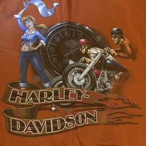 Harley-Davidson brown T-shirt Sz L